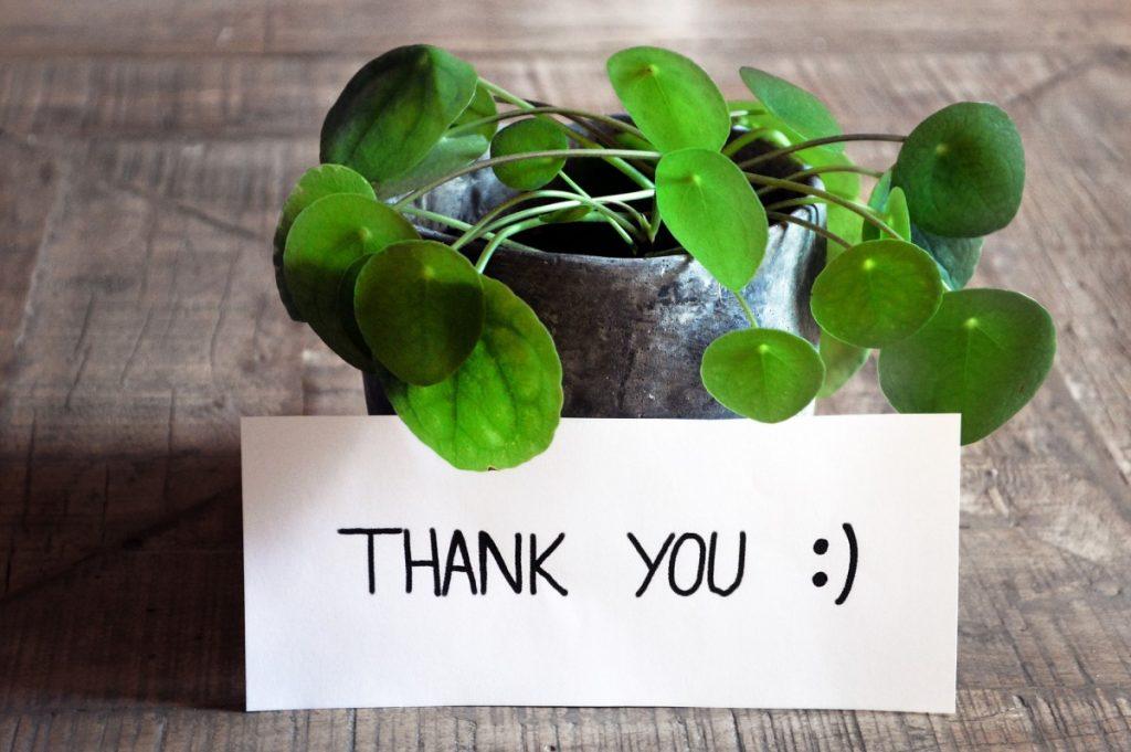 thank-you-bezplatne-materialy-do-nauki-je%CC%A8zyka-angielskiego-1024x681